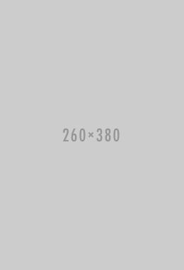 260 х 380