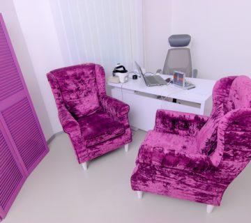 Главный кабинет пурпурные кресла